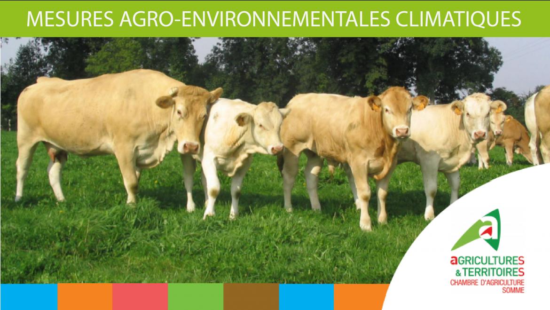 Exploitant agricole : Saisissez l'opportunité des MAEC