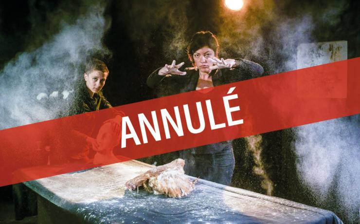 ANNULÉ : *MOIS DE L'ÉTRANGE* Théâtre – Les Malédictions – Cie La Volige / Nicolas Bonneau